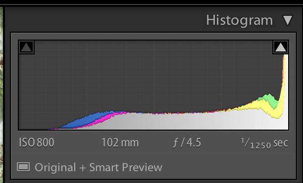 Histogram-overexposed