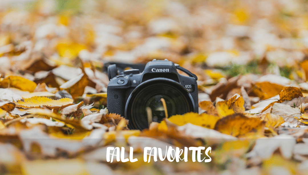 Favorites of Fall